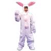 Bunny Suit Child
